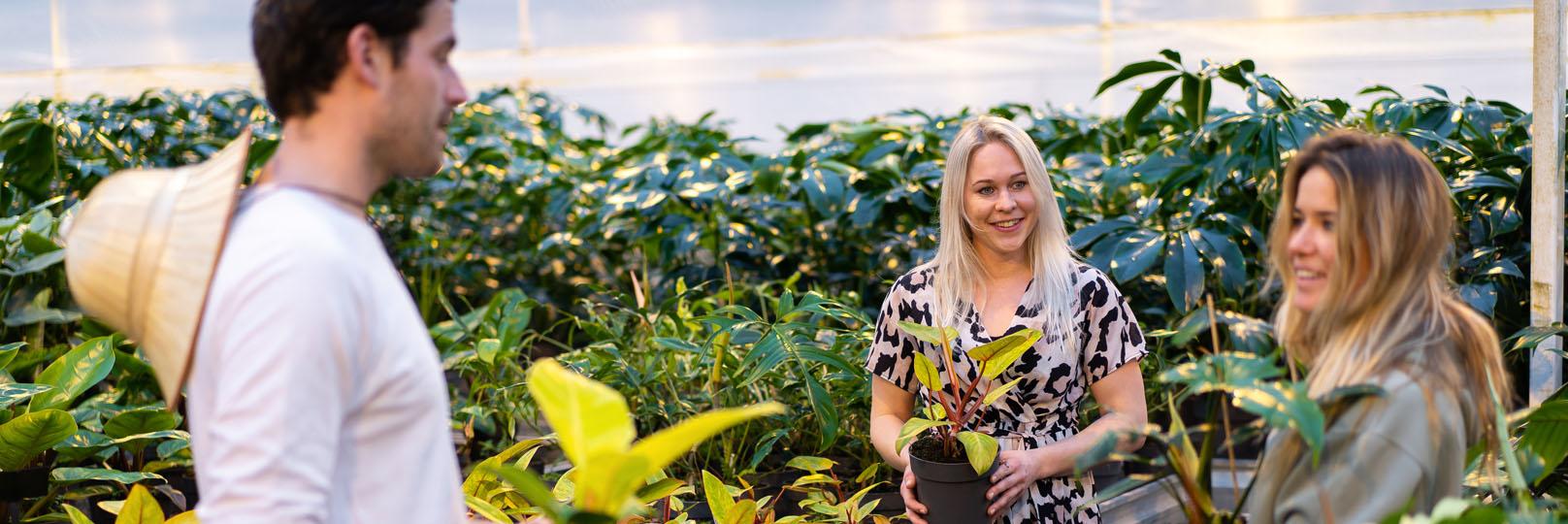 Koen Merel Rosa pratend in kwekerij